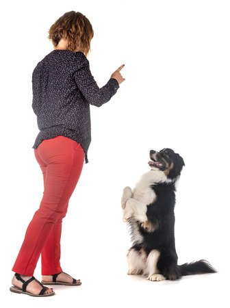 Australian shepherd and woman in front of white background
