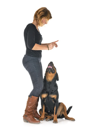 purebred rottweiler and woman in front of white background Banco de Imagens