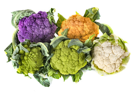 cauliflowers cabbage in front of white background Imagens