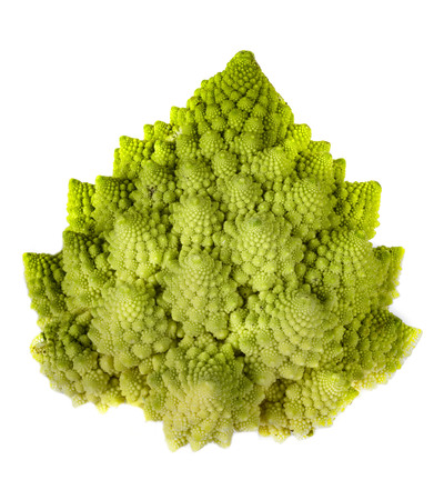 Green Romanesco cauliflower in front of white background Banco de Imagens
