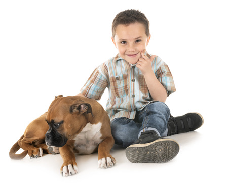 puppy boxer and child in front of white background