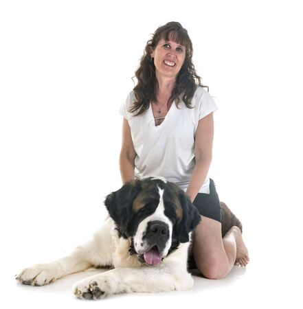 saint bernard and woman in front of  white background Stock Photo