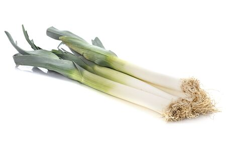 fresh leek in front of white background
