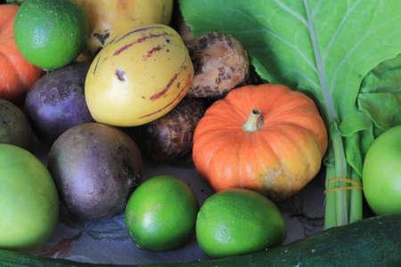 maca: Couve, maracuja, abobora, abacaxi, limao e maca