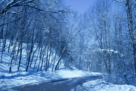 Landscape view of a rural country tree-lined road with snow cover in winter Archivio Fotografico