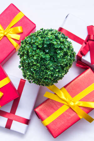 gift boxes with gteen plant Banco de Imagens