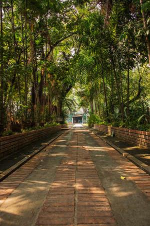 humanities: Chiang Mai pacin Temple Stock Photo