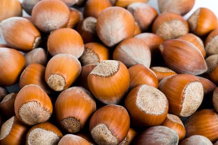 Fresh cropped hazelnuts as food background, macro image photo