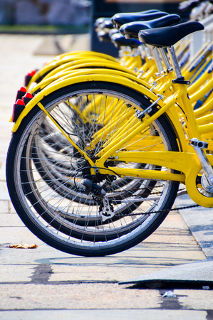 yelow bicycles lined up