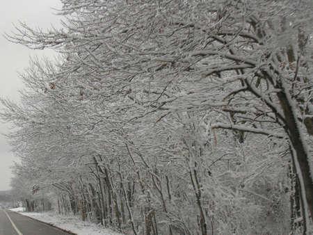 hampshire: New Hampshire tormenta  Foto de archivo