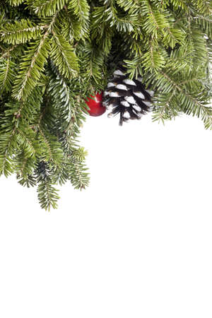 professionally: Christmas Evergreen decoration isolated on white.  Professionally spotted and retouched.  Clean background- no grey!