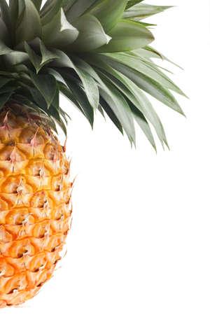 fresh Florida pineapple isolated on white background photo
