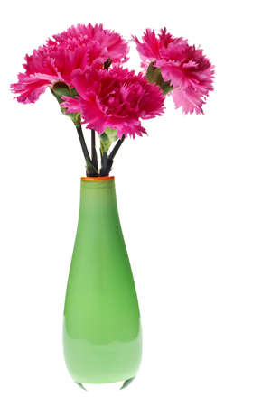 pink carnations in a green vase isolated on white photo