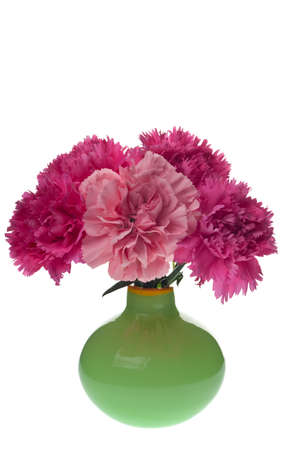 arrangment: pink carnations in a green vase isolated on white