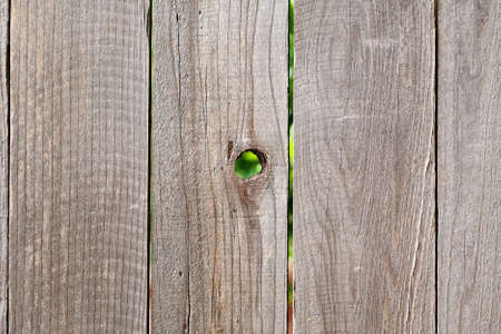 rough wooden fencing background with knot hole