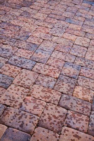 adoquines: adoquines o ladrillos rojos en las primeras etapas de una lluvia de verano