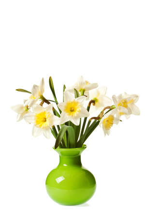 White Spring Daffodil Flower Bunch Isolated on White Background Stock Photo