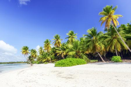 Caribbean wild beach, Punta Cana Stock Photo