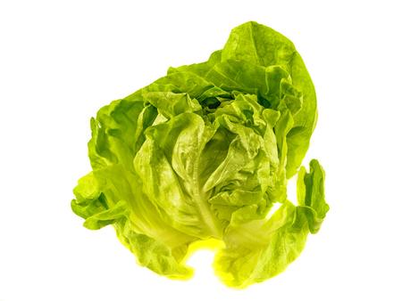 Fresh salad lettuce isolated on white photo