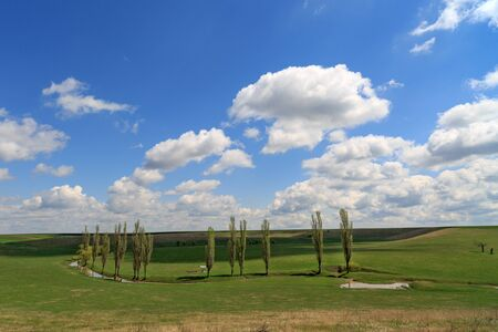 poplars: country landscape in Romania with poplars and a lake