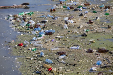 Bottles on a polluted lake