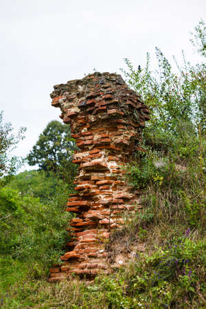 increased: Increased vegetation on one side of the brick ruin Stock Photo