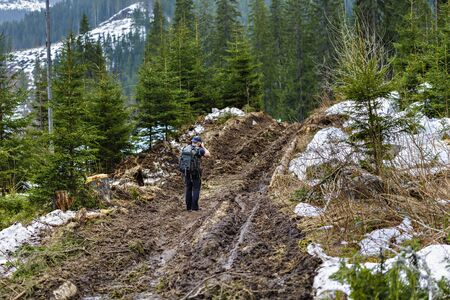 land slide: photographer on a dirt road in a pine forest in the mountains