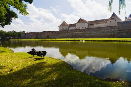 fagaras: Fagaras Fortress, the city of Fagaras, Romania