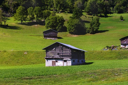 alp: Idyllic summer landscape in the Alps with fresh green mountain