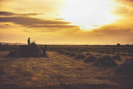 image silhouettes of farmers working in sunset