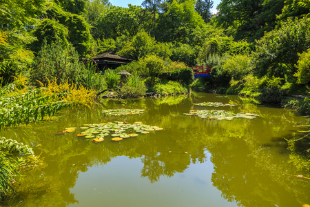 Lake in a garden in the Japanese style