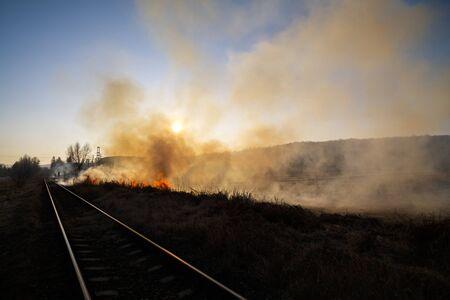 under fire: Incendio de vegetación bajo el sol Foto de archivo