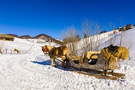 wooden sled pulled by horse Stock Photo