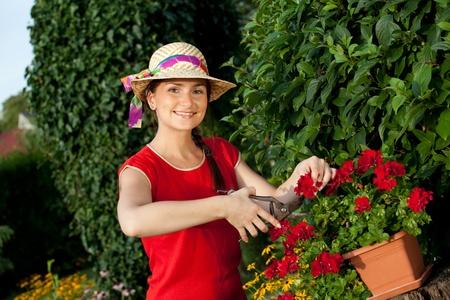 Gardener woman pruning her plants Stock Photo