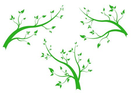 branch vegetate - isolated on background Stock Vector - 13420535
