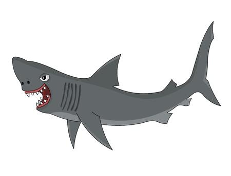 Cartoon shark on white background Illustration