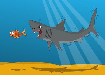 tiburon caricatura: Cartoon tibur�n y el pez de oro a peque�a Vectores