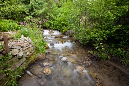 stream: Forest stream running over rocks Stock Photo