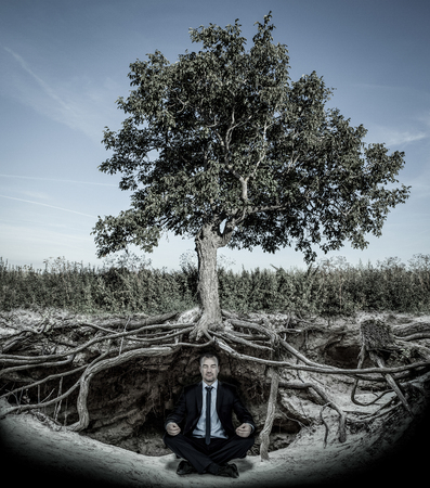Businessman meditating under tree with roots Stock Photo