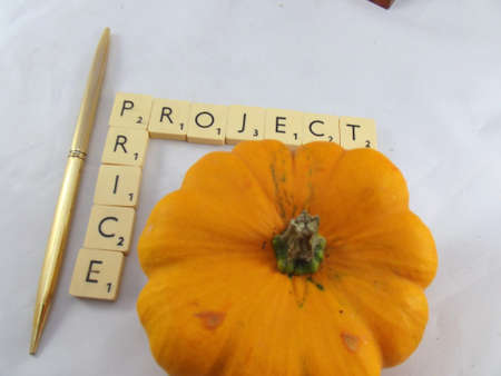 proportionate: word priceproject,gold pen,vegetable on white Stock Photo