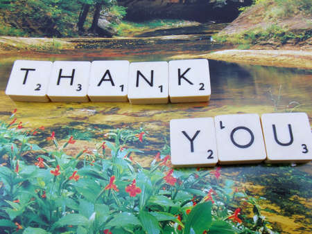 word thank you on abstract background Stock Photo - 15542631
