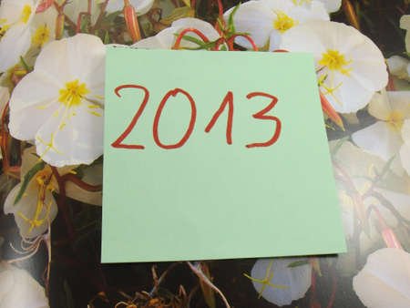word  2013 year photo