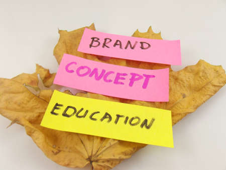 word brand,concept,education, photo