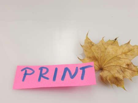 word print on white background Stock Photo - 16460730