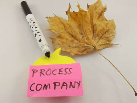 word process,company on white background photo