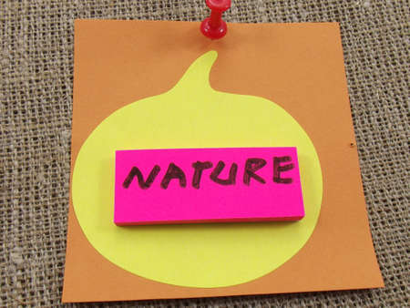 word nature on abstract background Stock Photo - 16592884