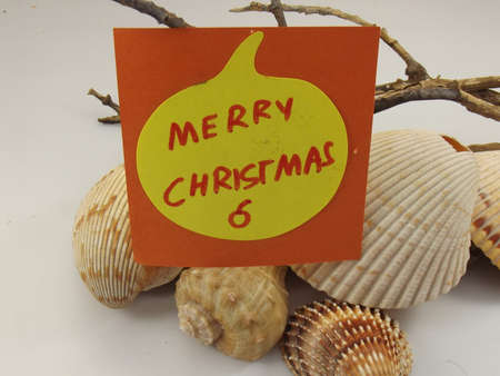 word merry christmas and shells on white background photo