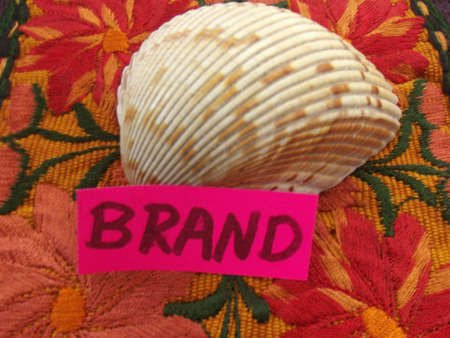 branded product: word brand and shell on colorful background