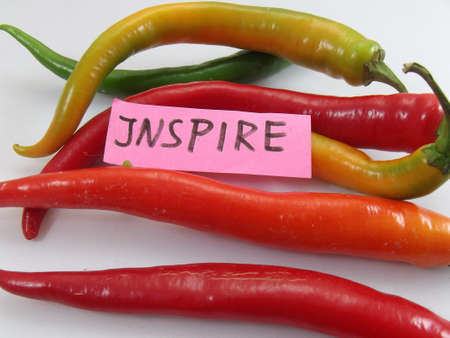 philosophy of logic: word inspire and chili