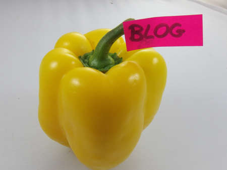 word blog and yellow pepper photo